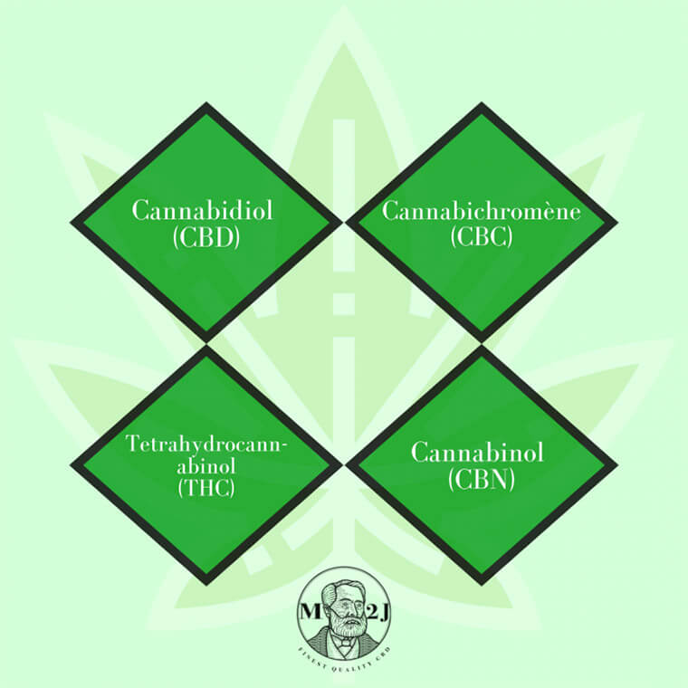 Les Phytocannabinoïdes